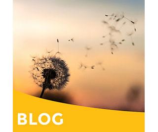 Verbonden ademen – Daphne Smit & Erica Rijnsburger